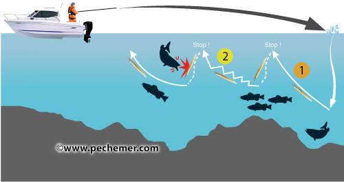 Canne à pêche Daïwa Procaster 210 L  Cannes lancer Spinning  Cannes