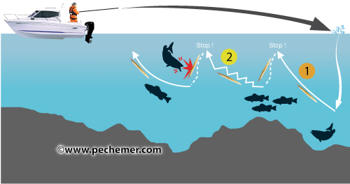 La pêche sur les bassins intérieurs
